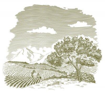 Poster Desenho da pena e da tinta de um campo de exploração agrícola com as montanhas no fundo.