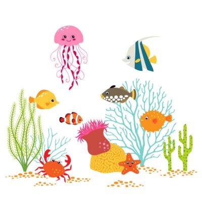 Poster Desenho subaquático dos desenhos animados no fundo branco