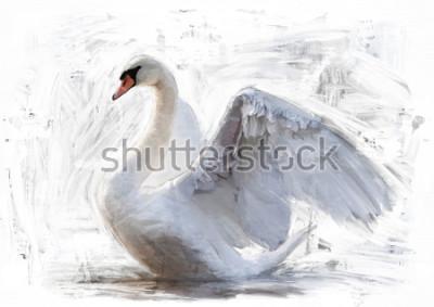 Poster esboço de cisne branco / pintura a óleo