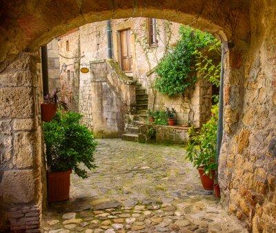 Poster Estreito, rua, medieval, tuff, cidade, sorano, arco, verde, plantas, cobblestone ...