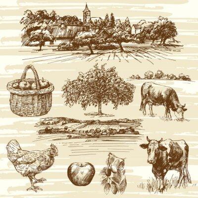 Poster Fazenda, colheita, rural, paisagem, mão, desenhado, jogo