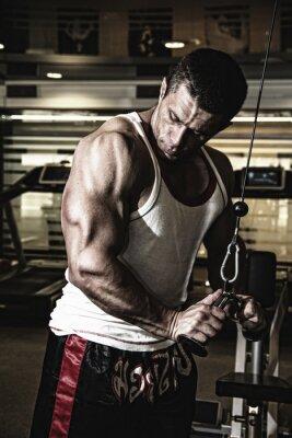 Poster Fisiculturista treina os músculos no ginásio