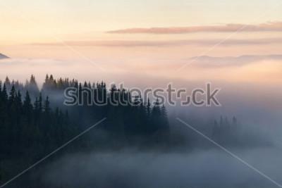 Poster Floresta nas montanhas cobertas de nevoeiro