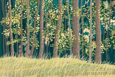 Poster Floresta verde