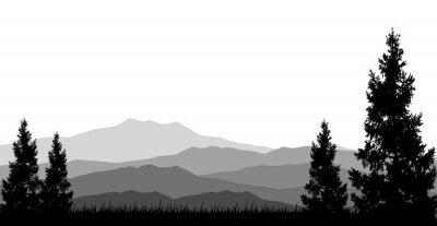 Poster florestas de coníferas para você projetar