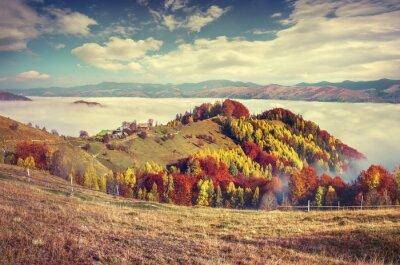 Poster Foggy Autumn Morning nas montanhas dos Cárpatos.