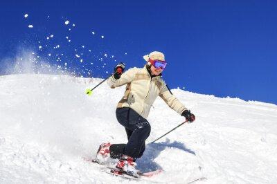 Poster Freude sou Skifahren