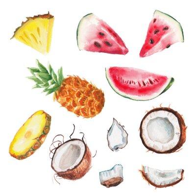 Poster frutas da aguarela verão set