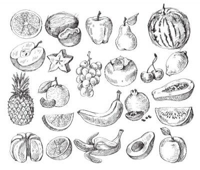 Poster fruto mão desenhada