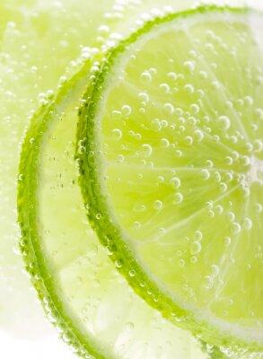 Poster Fundo com frutas limão