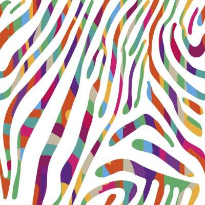 Poster Fundo com teste padrão colorido da pele da zebra