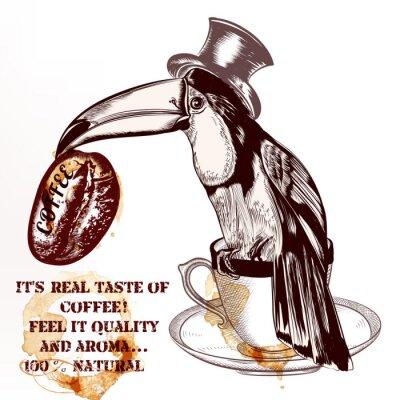 Poster Fundo ou poster do vetor do café com o pássaro toucan desenhado mão h