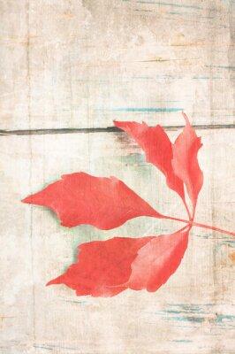 Poster Fundo sujo com folha vermelha