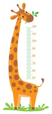Poster Girafa parede do medidor