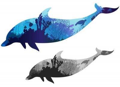 Poster golfinho
