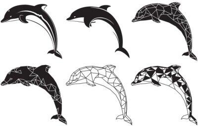Poster golfinhos