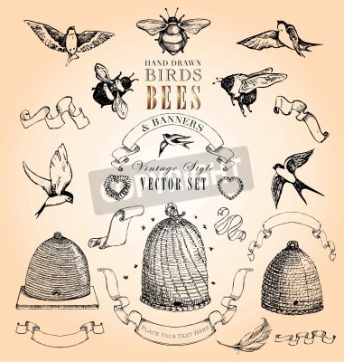 Poster Hand Drawn Birds, Bees and Banners Vintage Style Vector Set