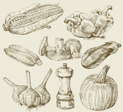 Poster Hand-drawn set vegetais