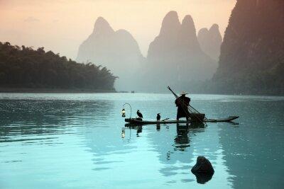 Poster Homem chinês de pesca com cormorões aves