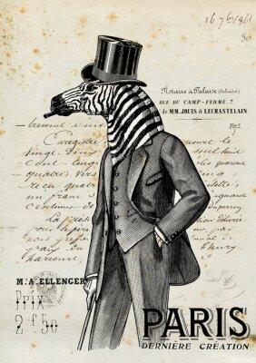 Poster Homem Zebra