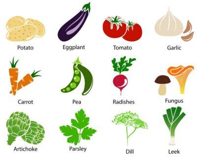 Poster Ícones vegetal com Título