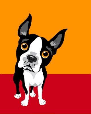 Poster ilustração engraçada de Boston Terrier
