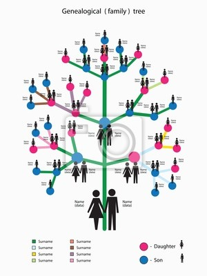 arvore genealogica koni polycode co