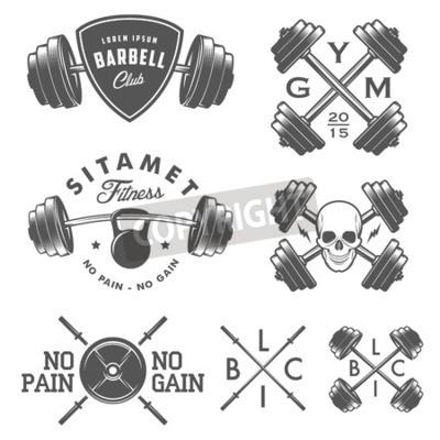 Poster Jogo, vindima, ginásio, emblemas, etiquetas, desenho, elementos