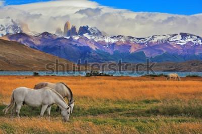 Poster Lago Laguna Azul nas montanhas. Na margem do lago pastando cavalos. Paisagem impressionante no parque nacional Torres del Paine, Chile