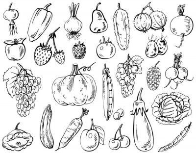 Poster legumes, frutas e bagas