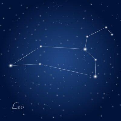 Poster Leo sinal da constelação do zodíaco no céu nocturno estrelado