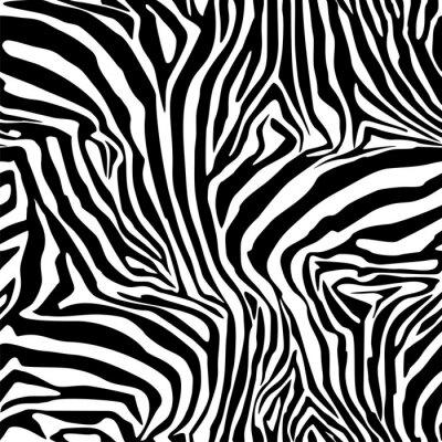 Poster Listras Da Zebra. Fundo. Padrão. Um teste padrão sem emenda.