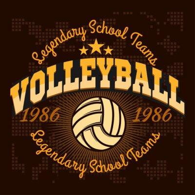 Poster Logotipo do campeonato de voleibol com bola - ilustração do vetor.