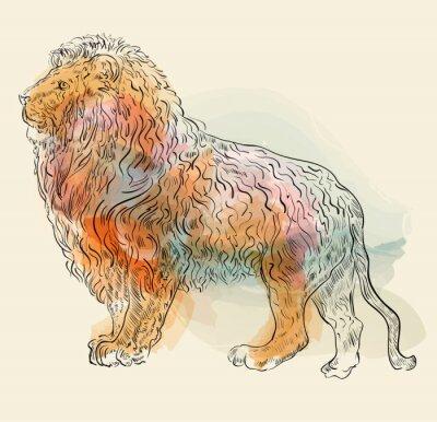 Poster Mão, desenhado, vetorial, Ilustração, Leão