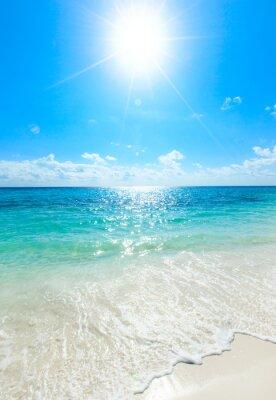Poster Mar tropical