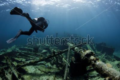 Poster Mergulhador, natação, sobre, um, navio, destruição