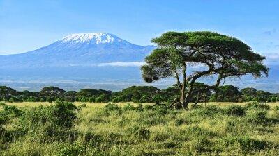 Poster Monte Kilimanjaro em Kenya