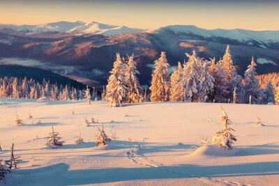 Poster Nascer do sol ensolarado da manhã na montanha do inverno. Estilo retrô.