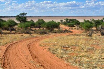Poster O deserto de Kalahari, Namíbia