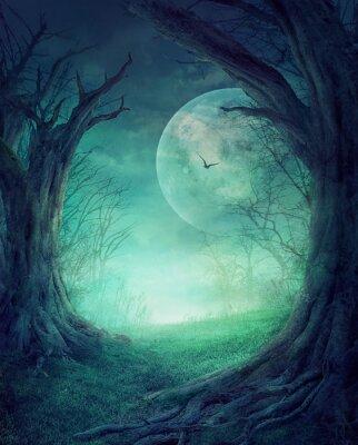 Poster O Dia das Bruxas assustador Floresta