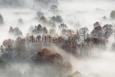 Poster Outono, paisagem, itália
