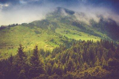 Poster Paisagem da montanha e partes superiores das florestas cobertas com a névoa. Céu nublado dramático.