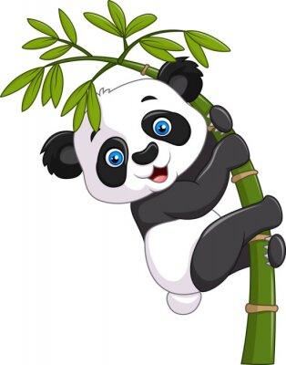 Poster Panda engraçada bonito do bebê que pendura em uma árvore de bambu