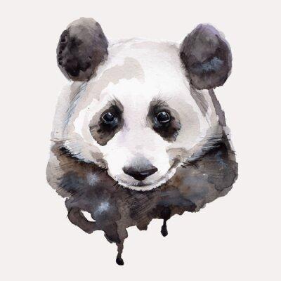 Poster Panda.Watercolor ilustração Vector