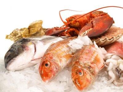 Poster Peixes e frutos do mar