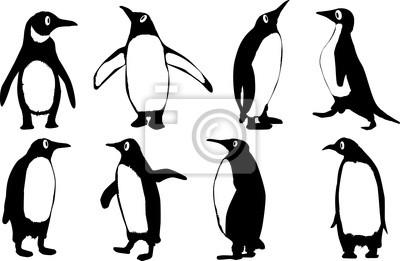 Pinguins Dos Desenhos Animados Cartazes Para A Parede Posters