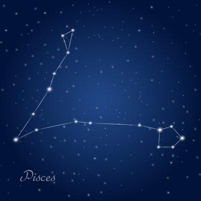 Poster Pisces sinal da constelação do zodíaco no céu nocturno estrelado
