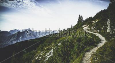 Poster Pista de caminhada através de picos alpinos florestais no sol de verão com vista para cumes distantes e intervalos em uma paisagem cênica austríaca