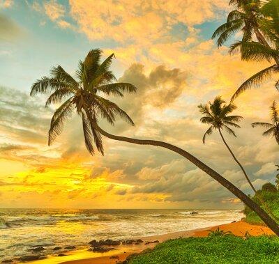 Poster Pôr do sol sobre o mar