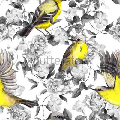 Poster Prado selvagem flores e pássaros. Aquarela Padrão sem emenda neutro em monocromáticas cores preto e brancas com pássaros brilhantes